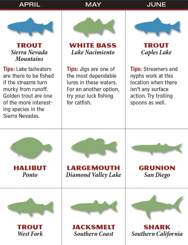 California 2016 Fishing Calendar Game Fish  xjb