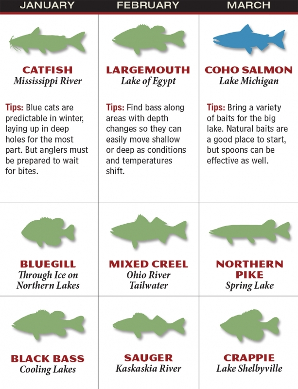 Illinois 2016 Fishing Calendar Game Fish  xjb