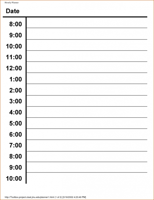 Blank Hourly Calendar : Printable daily hour calendar free template