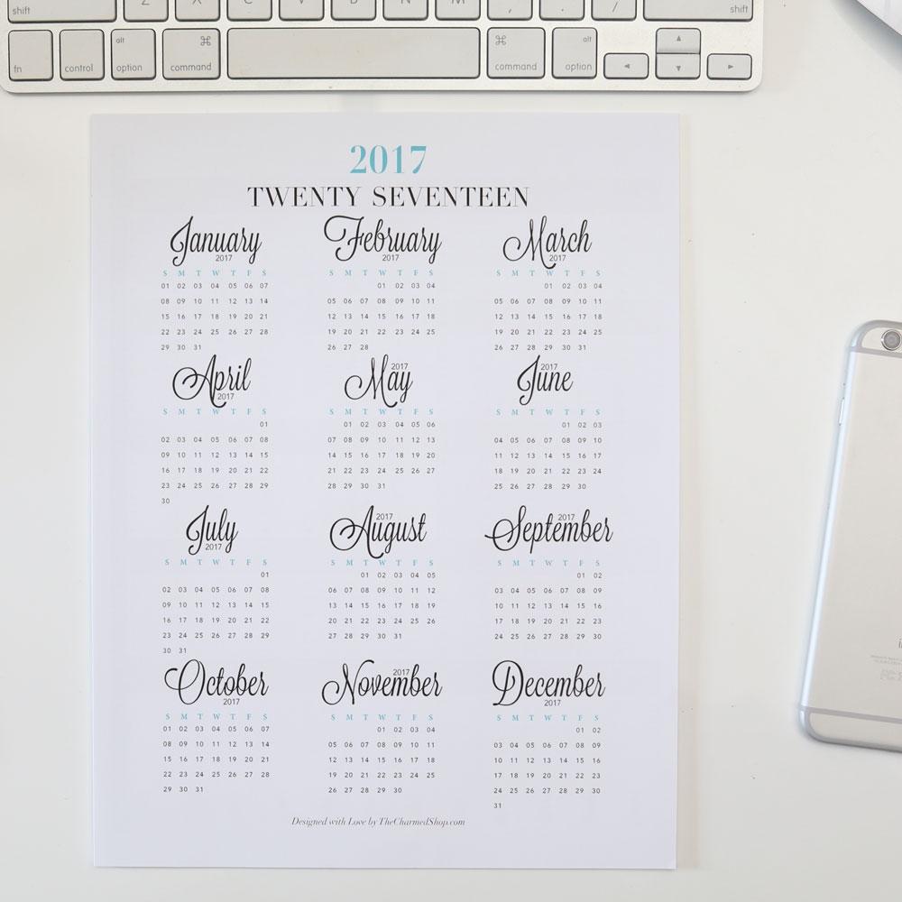 2017 Year At A Glance Calendar Printable Lettera4 A5 Half