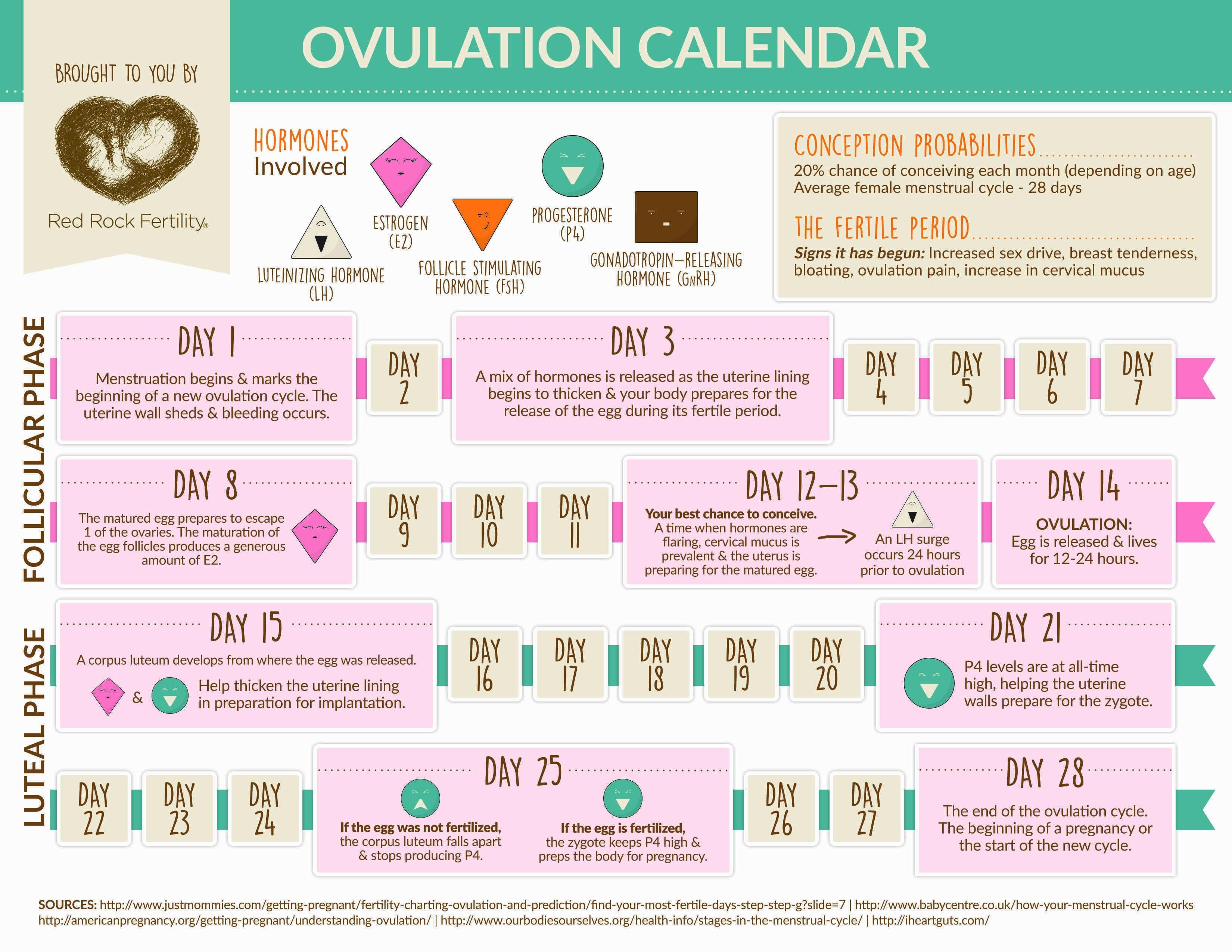 Calendar Ovulation Calendar3abry