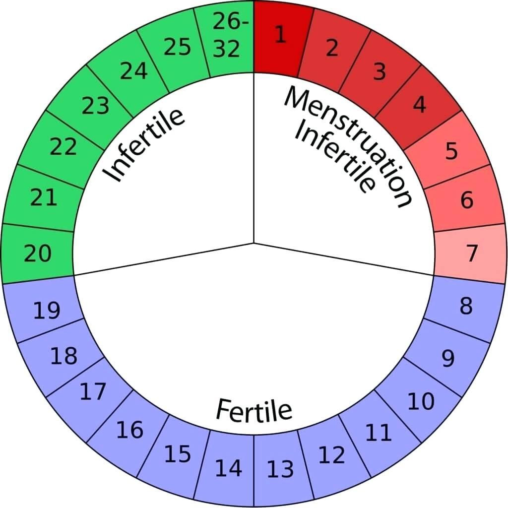 Chart Birth Control Effectiveness Chart  Xjb