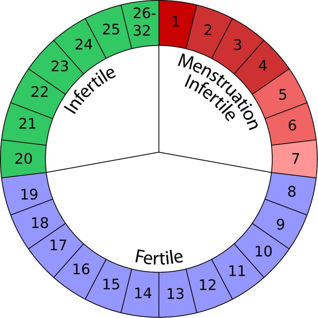 Natural Birth Control Options Suggestions Birth Natural  Xjb