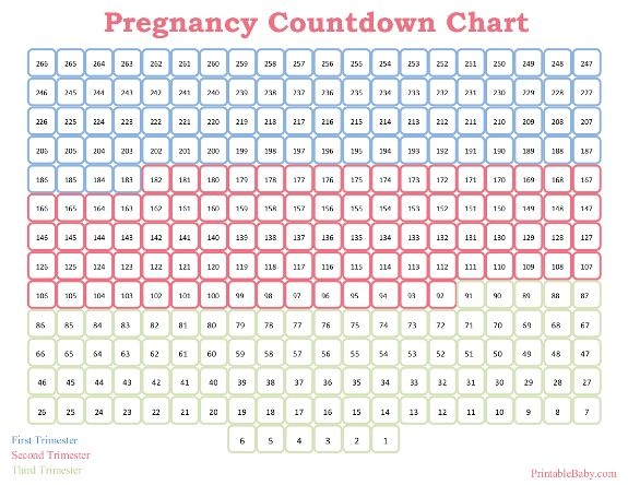 Printable Pregnancy Countdown Chart Printable Ba Charts