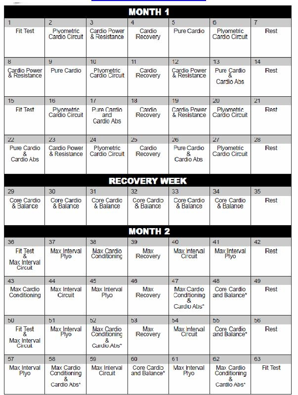 Insanity Workout Calendar Im Bringing Sexy Back Pinterest