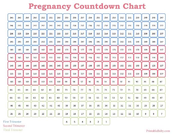 Printable Pregnancy Countdown Chart