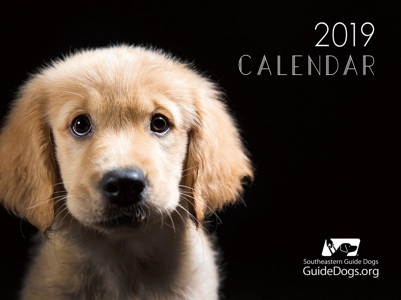 2019 Calendar - Southeastern Guide Dogs Calendar 2019 Dogs