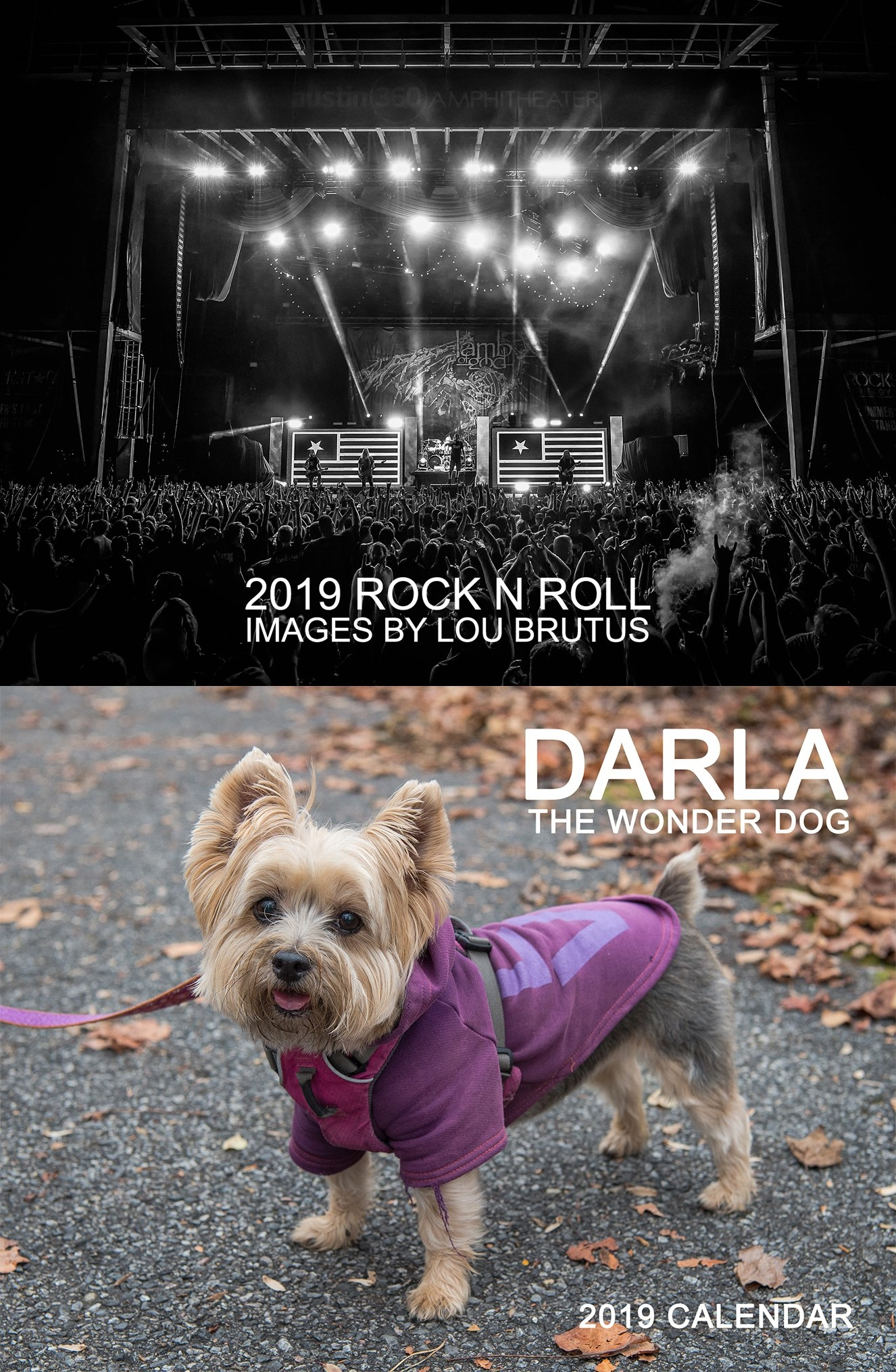 2019 Calendars From Lb & Darla - Lou Brutus - Sonic Warrior Rock N Roll Calendar 2019