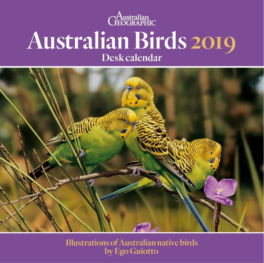 Australian Geographic 2019 Bird Desk Calendar | Magshop Calendar 2019 Birds