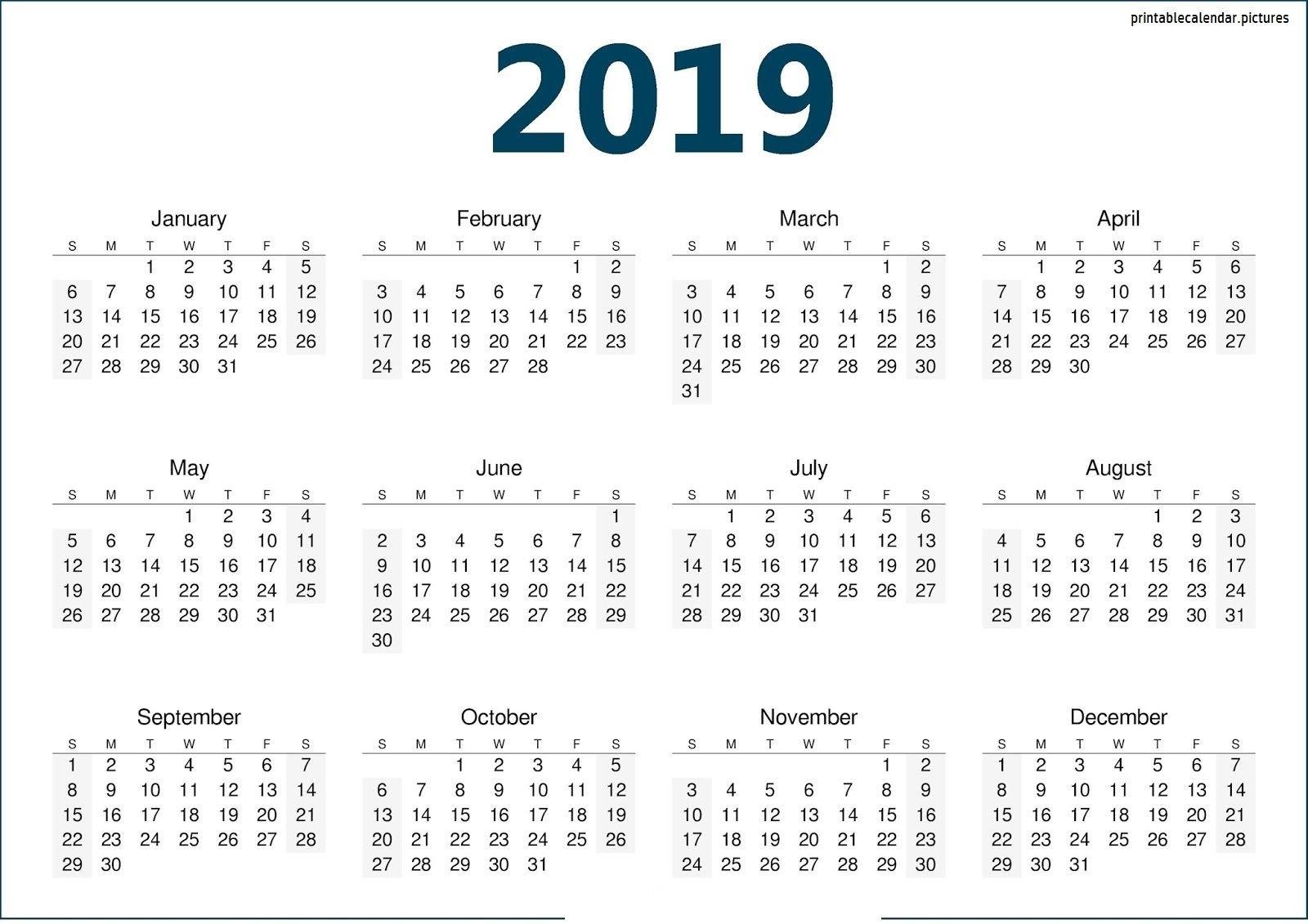 Calendar Template 2019 | Calendar Template 2019 | Calendar, 2019 Discover 5 Calendar 2019