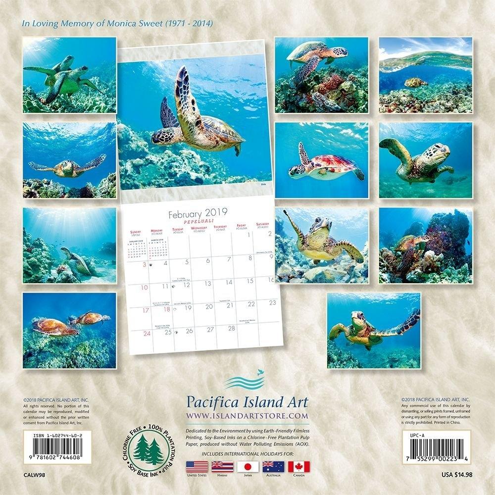 Calendarsdotcom: 2019 Hawaii Sea Turtles Wall Calendar, Sea Life Calendar 2019 Hawaii