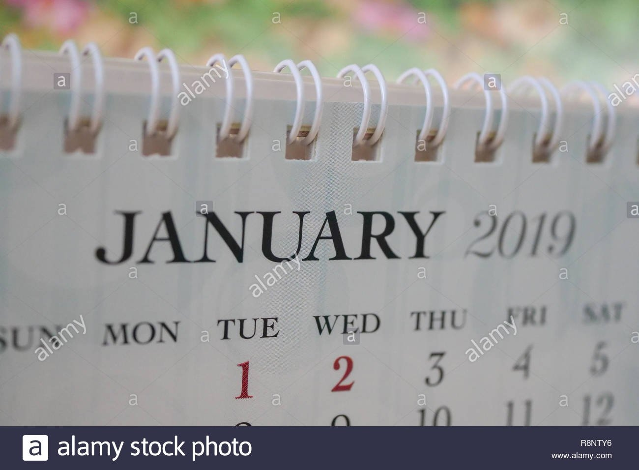 Close Up Calendar Of January 2019 Stock Photo: 229132602 - Alamy Calendar 2019 Bu