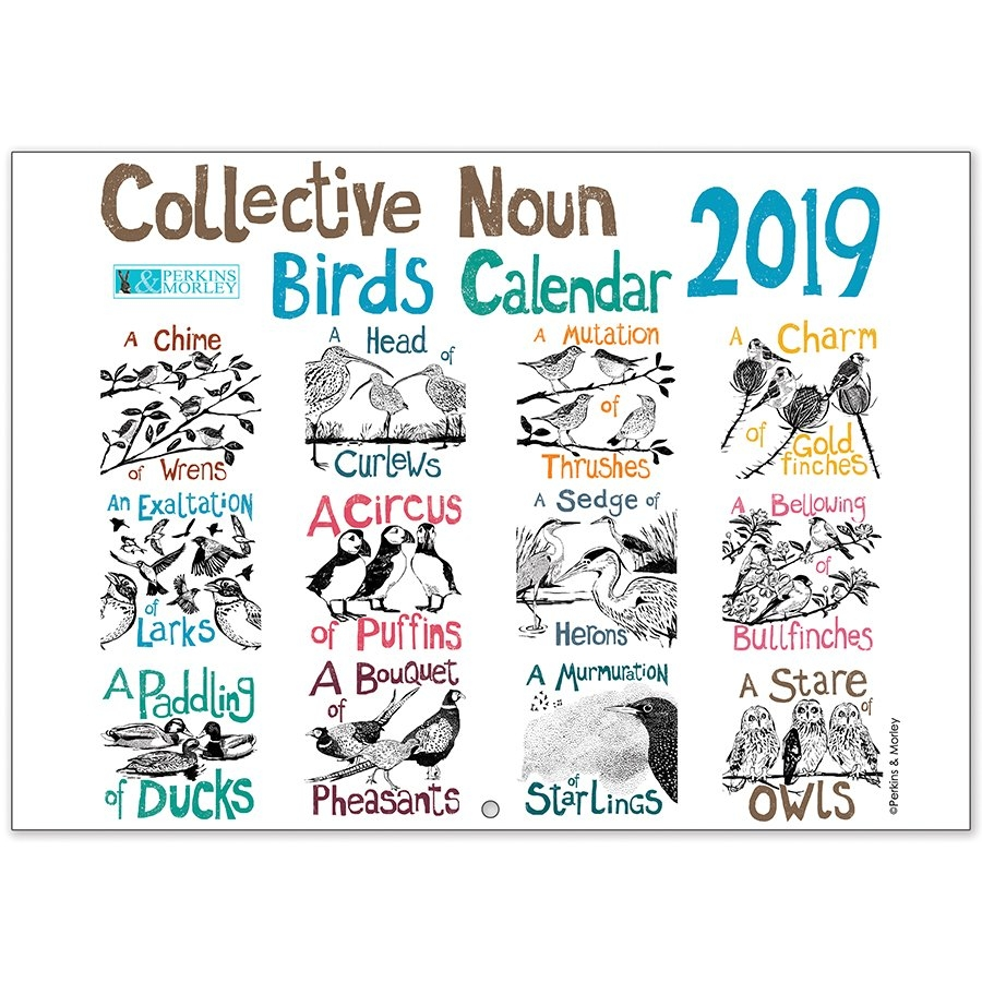 Collective Noun Bird Calendar 2019 - Perkins And Morley Shop Calendar 2019 Shop
