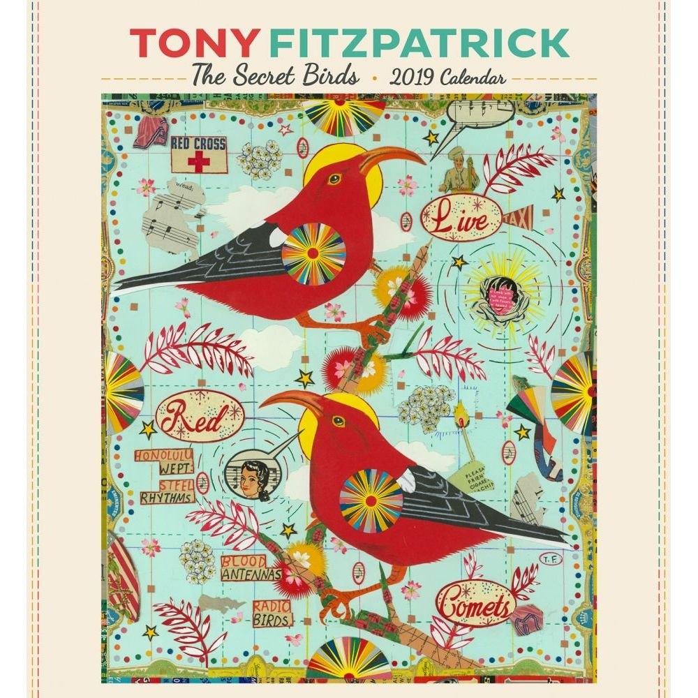 Fitzpatrick Secret Birds 2019 Wall Calendar-Calendars-Books Calendar 2019 Birds