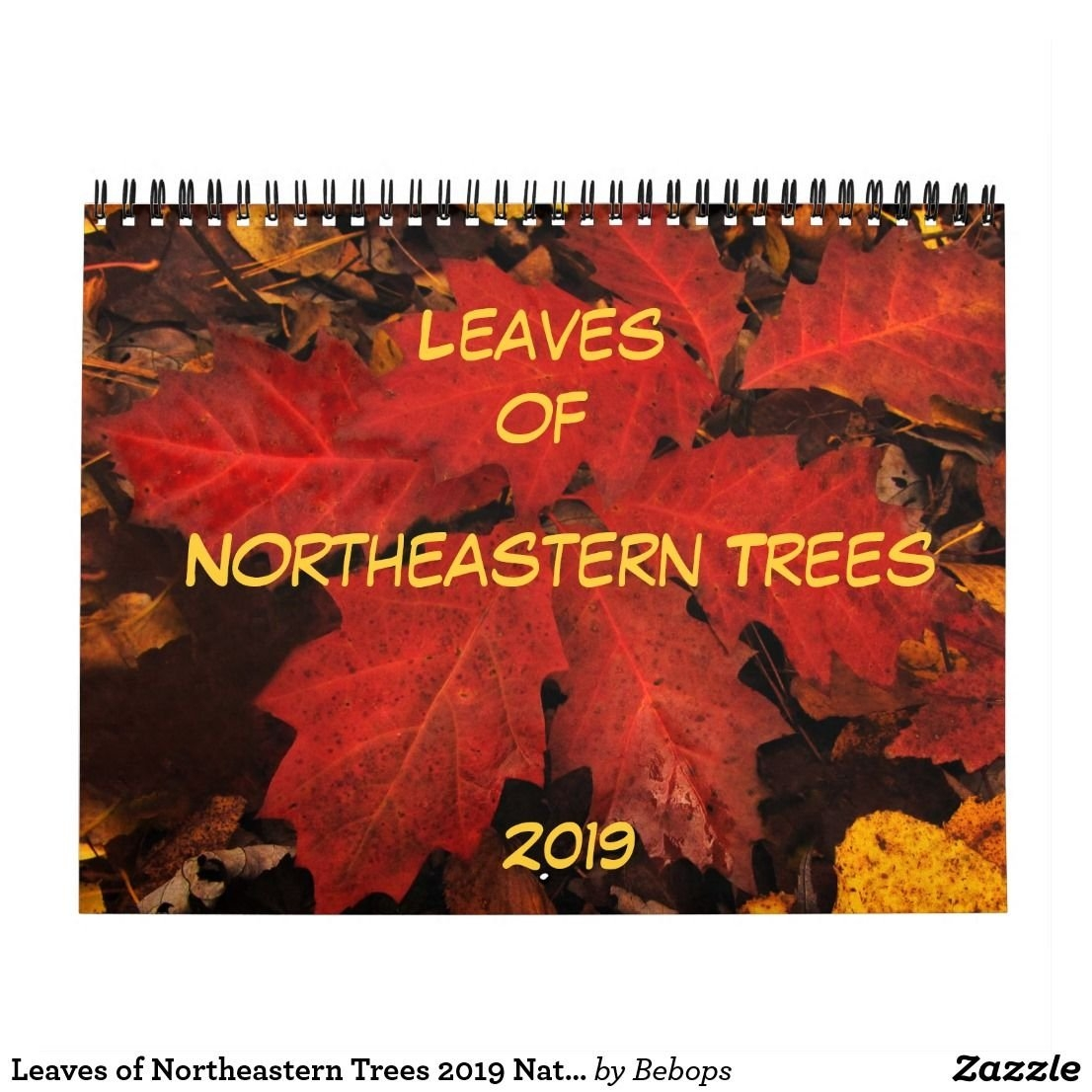 Leaves Of Northeastern Trees 2019 Nature Calendar | 2019 Calendars Calendar 2019 Northeastern