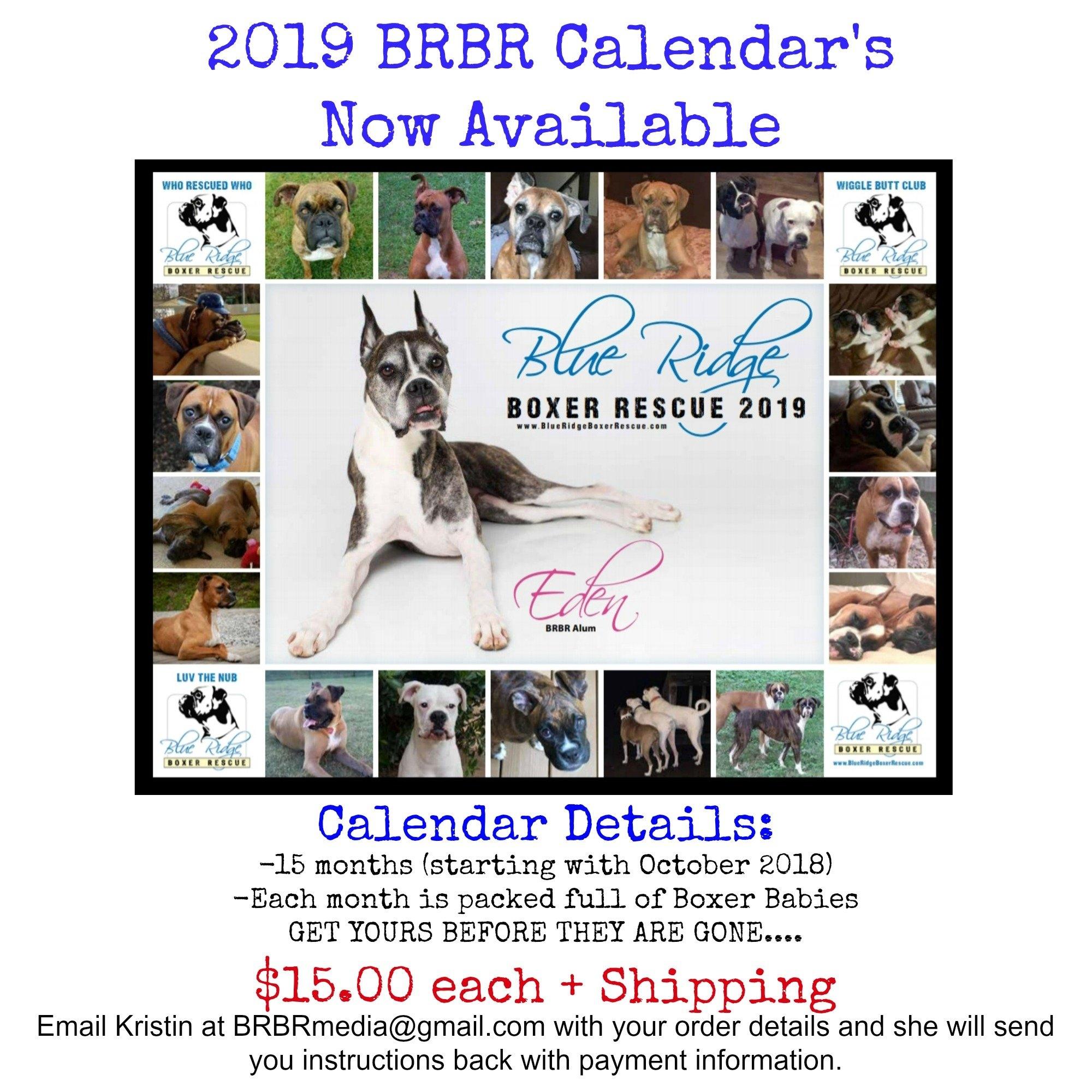 Purchase Your 2019 Calendar Today!! - Blue Ridge Boxer Rescue Calendar 2019 Purchase