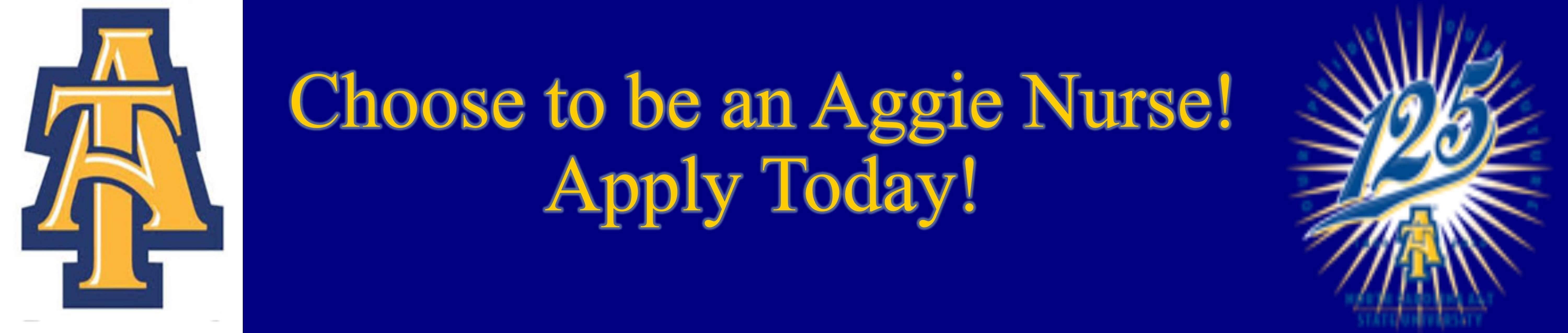 Traditional Bachelor Of Science In Nursing Entry Option - North A&t Academic Calendar 2019