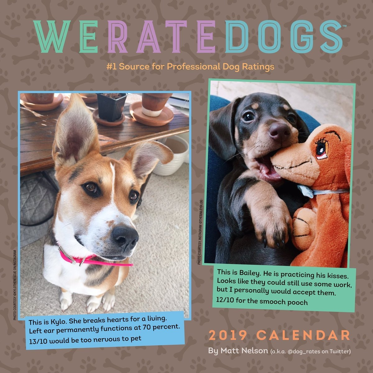"""Weratedogs™ On Twitter: """"our 2019 Calendars Are Available For Pre Calendar 2019 Dogs"""