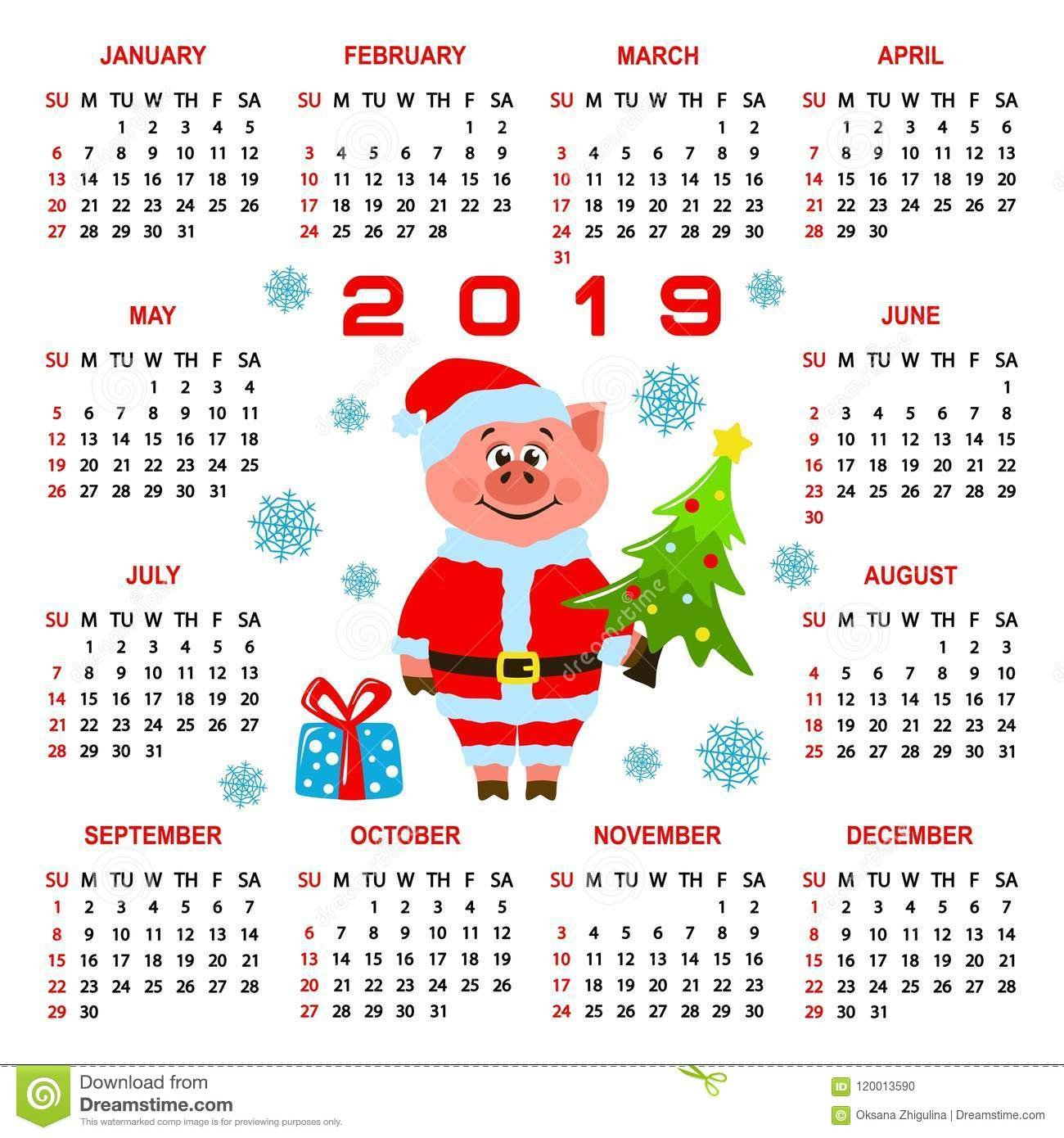 Colorful Square Calendar 2019 With A Pig In Santa Claus Costume Calendar 2019 Gift