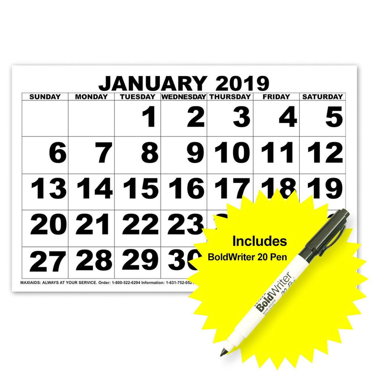 Maxiaids | Low Vision Print Calendar - 2019 With Boldwriter 20 Pen Zeiss Calendar 2019