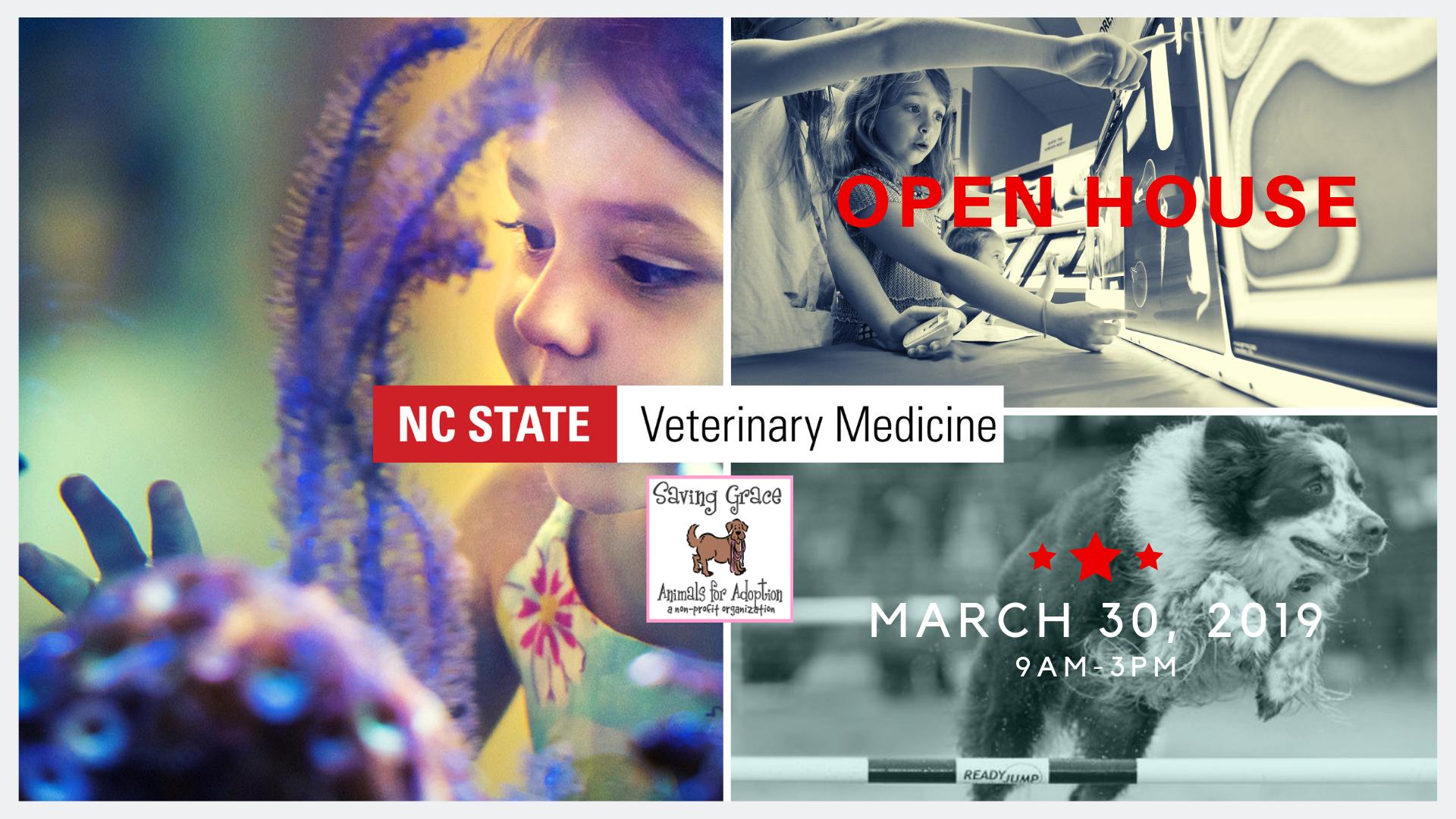 Nc State Veterinary Medicine Open House | Saving Grace Calendar 2019 Ncsu