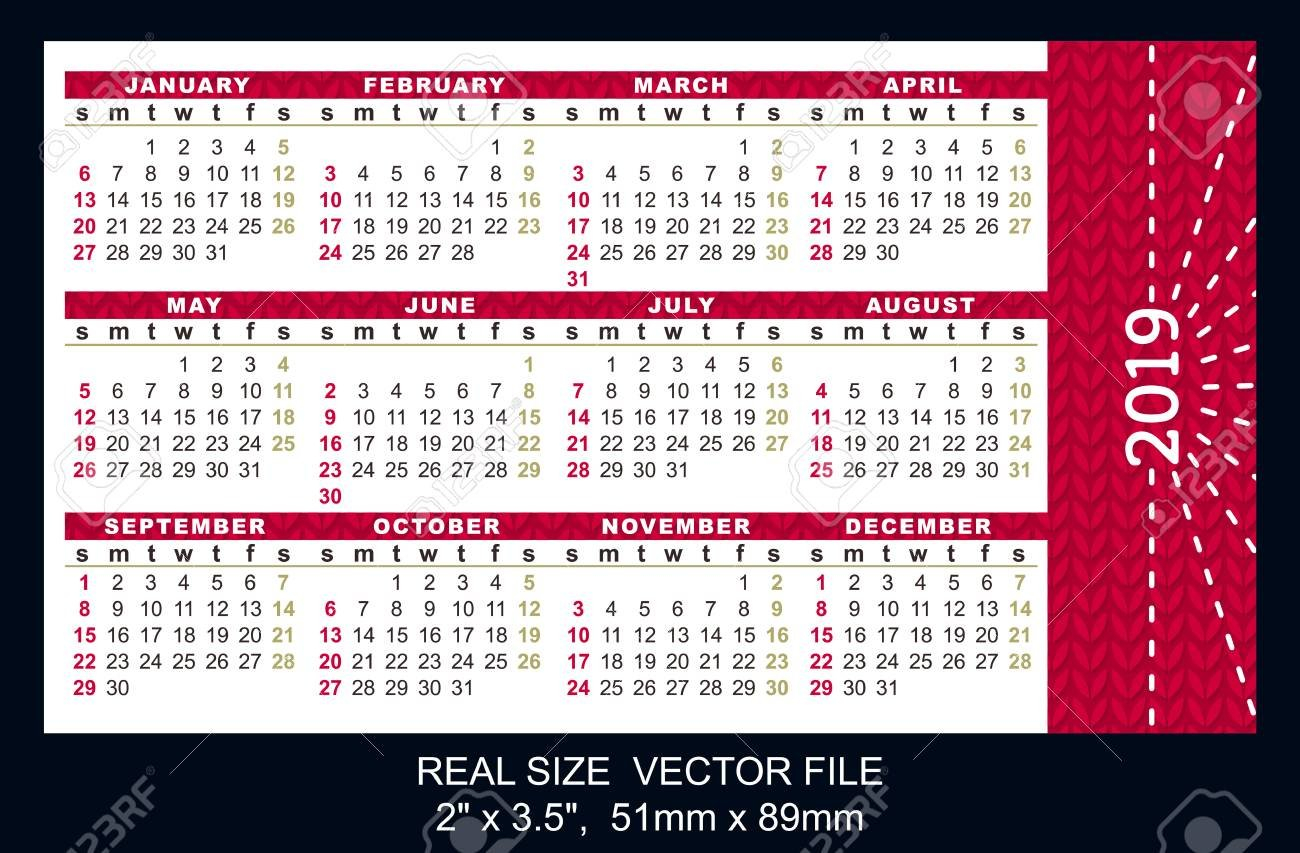 "Pocket Calendar 2019, Start On Sunday, Vector Size: 2"" X 3.5 Calendar X 2019"