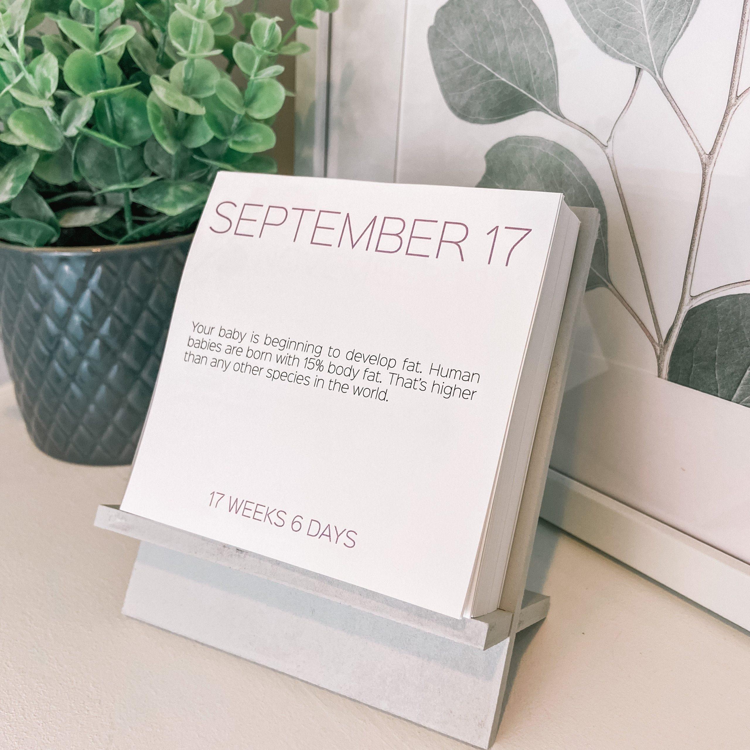 Custom Due Date Baby Countdown Calendar Pregnancy Gift For Pregnancy Count Down Calendar