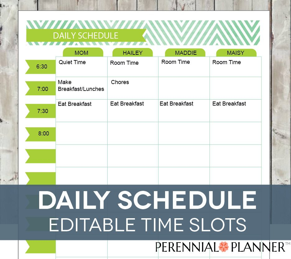 Daily Schedule Hourly Printable Editableperennialplanner Daily Calendar With Hour