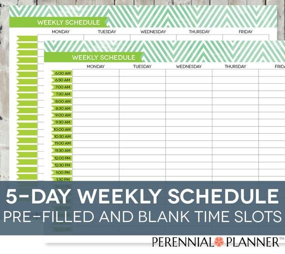 Daily Schedule Printable Editable Times Half-Hourly Weekly Daily Calendar With Hour