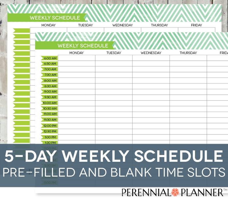 Daily Schedule Printable Editable Times Half-Hourly Weekly Daily Hourly Calendar Printable
