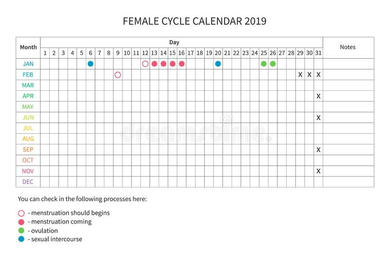 Female Menstrual Cycle Stock Illustrations – 1,038 Female Menstrual Cycle Calendar Template