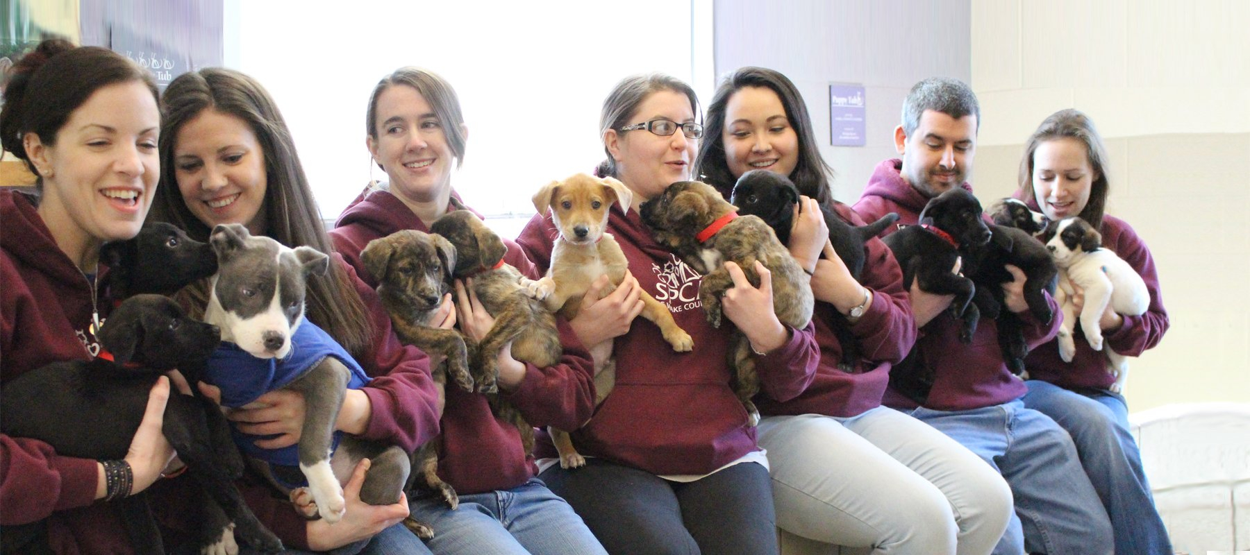 Planning Your Visit | Spca Of Wake County Wake County March Vation
