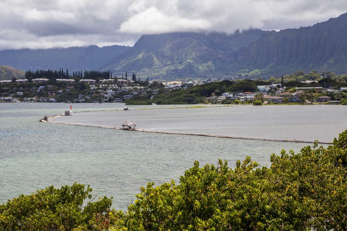 See Hawaiian Fish Ponds & Make Environment Impact Hawaiian Fishing And Planting Calendar