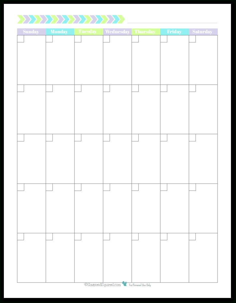 Unlined Sunday Start Portrait Full Size - Scattered Squirrel 31 Day Monthly Schedule