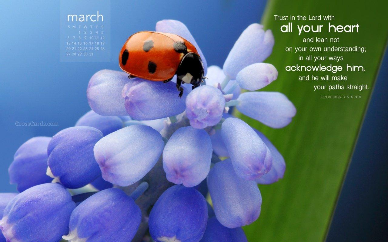 Crosscards Wallpaper March 2016 - Wallpapersafari Crosscards Monthly Calendar For Desktop
