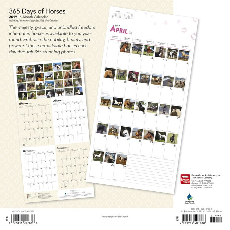 Horses - 365 Days Of - Calendars 2021 On Ukposters/Ukposters Calendars With 365 Numbbering