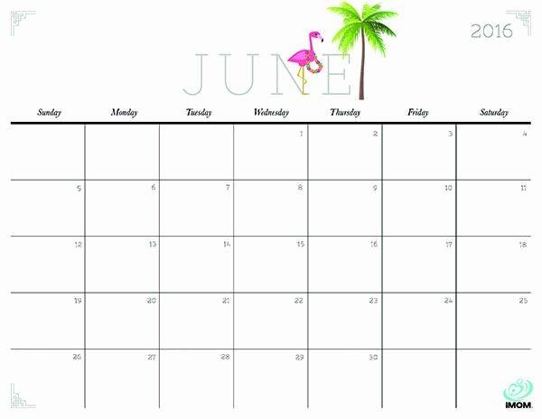 Printable Calendar You Can Edit In 2020   Calendar Printable Calendar I Can Edit And Pring